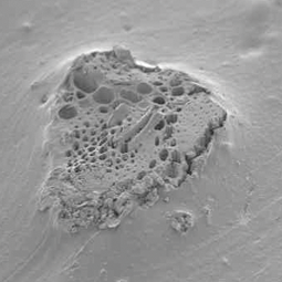 magnification of the absorbent carbonic powder used in the GSi5 cold weather tire